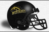 Mitchell Mustangs 2014 Schedule