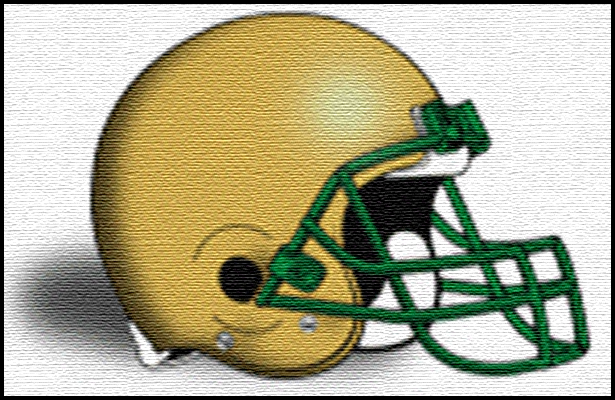 Fleming Island Golden Eagles 2013 Football Schedule