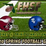 springtop20-16-2013