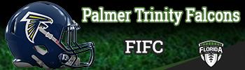 2015-FIFC-PalmerTrinity